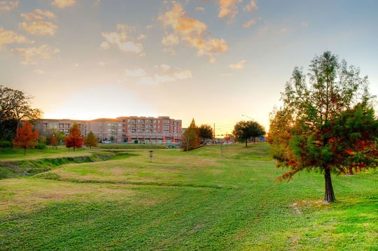 Apartments in College Station, TX