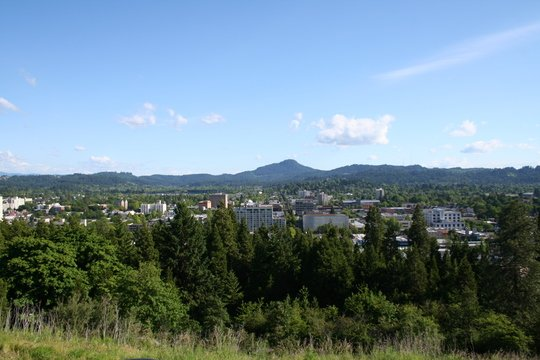 Studio Apartment Eugene Oregon eugene apartments for rent | abodo